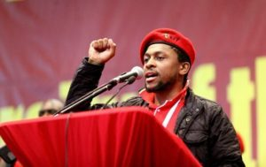 Mbuyiseni Ndlozi biography