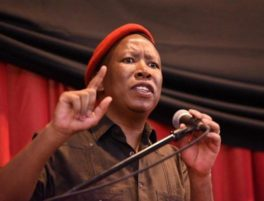Julius Malema biography
