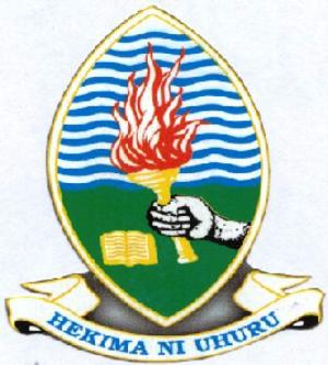 best university in Tanzania
